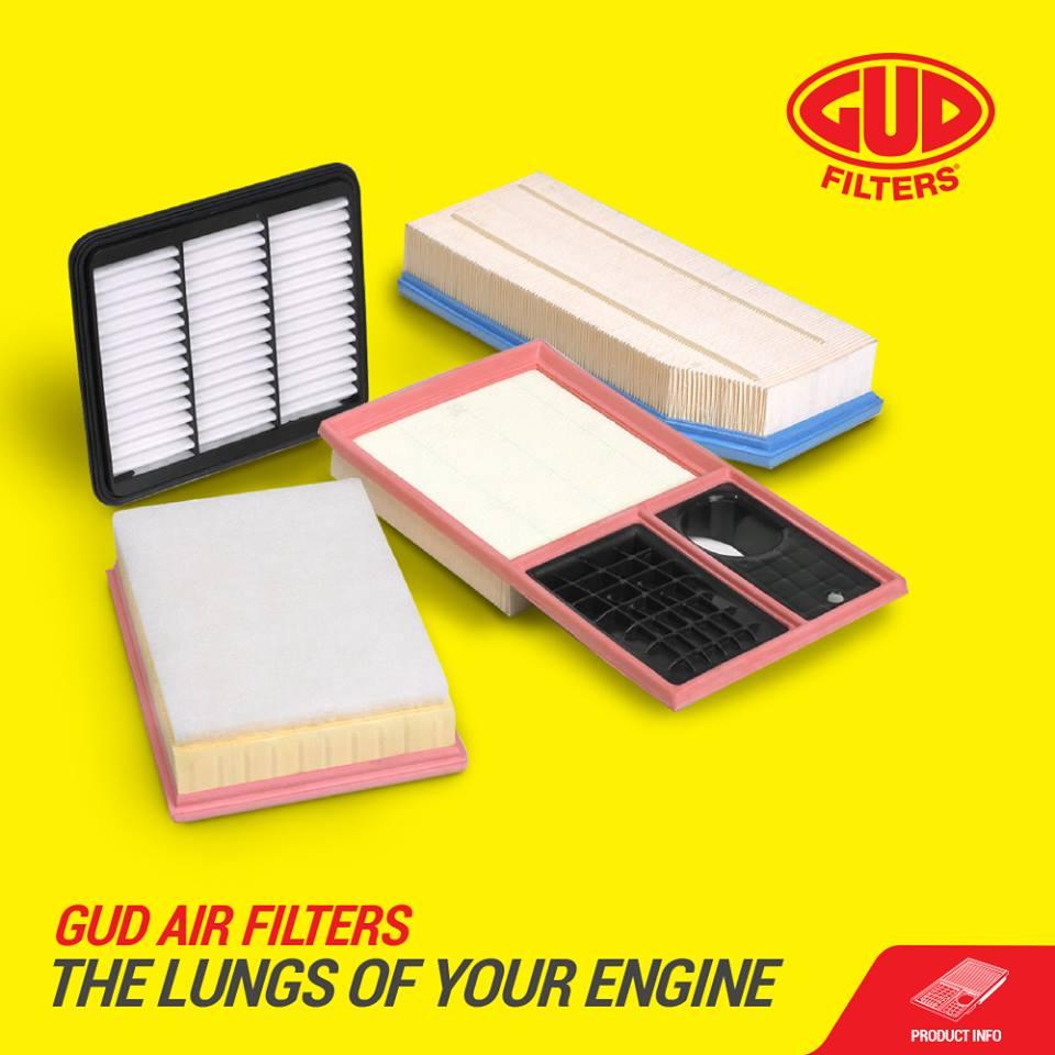 gud-lungs of engine-filters-asap-motors
